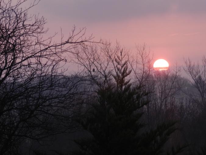 Sunrise, December 3, 2012