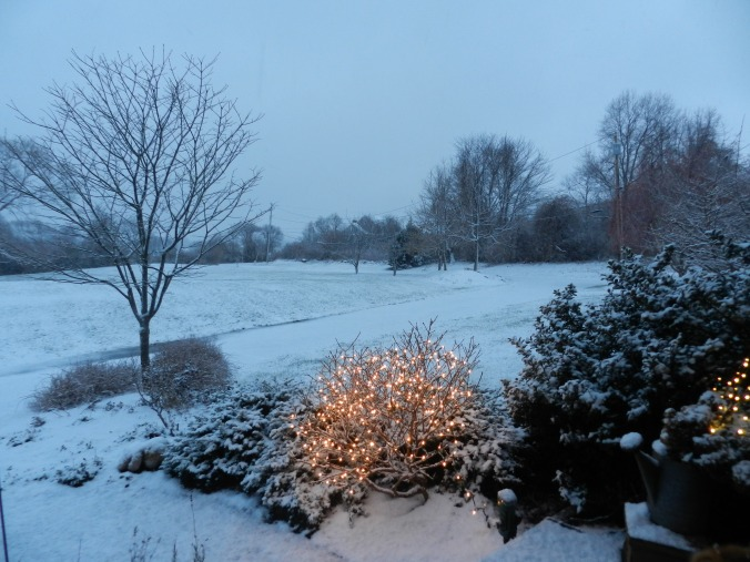 december 29, 2012 4 pm