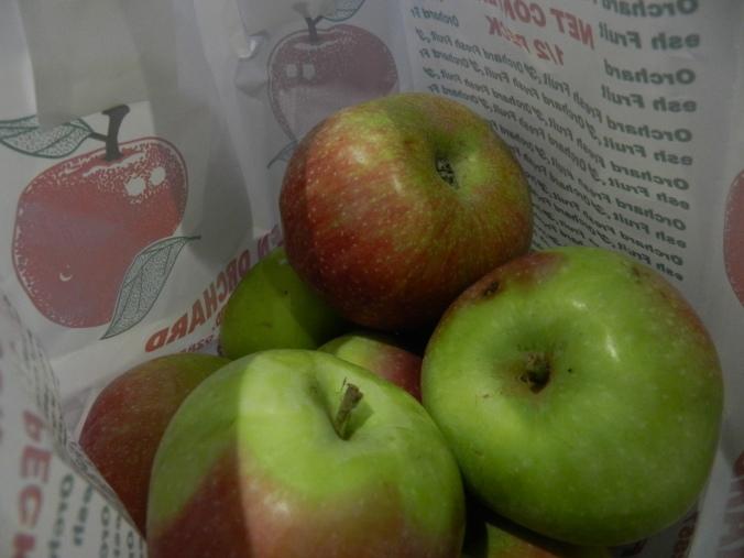 Macintosh