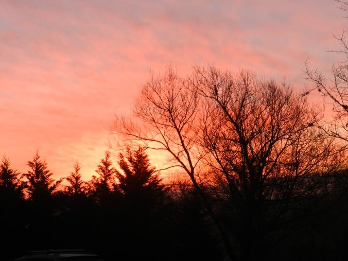 1-9-2013 Sunrise
