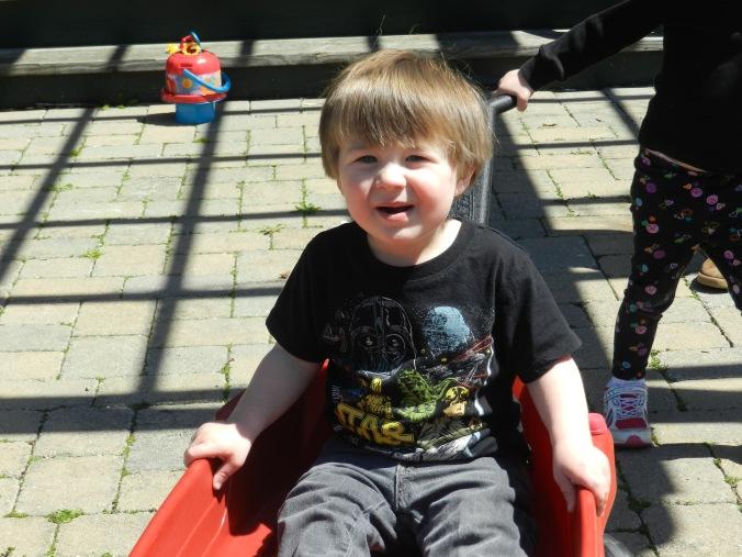 Niko in the wagon