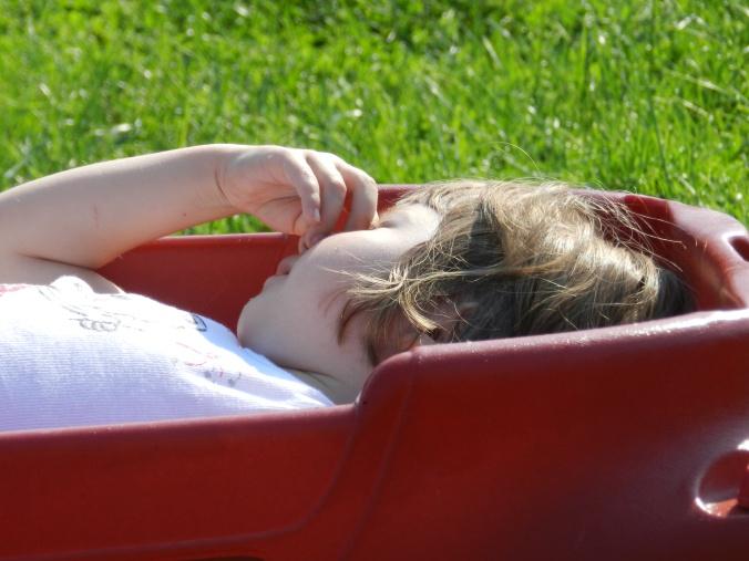 wagon 'nap'