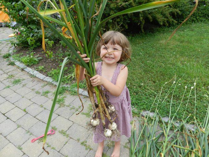 Garden Helper Number One