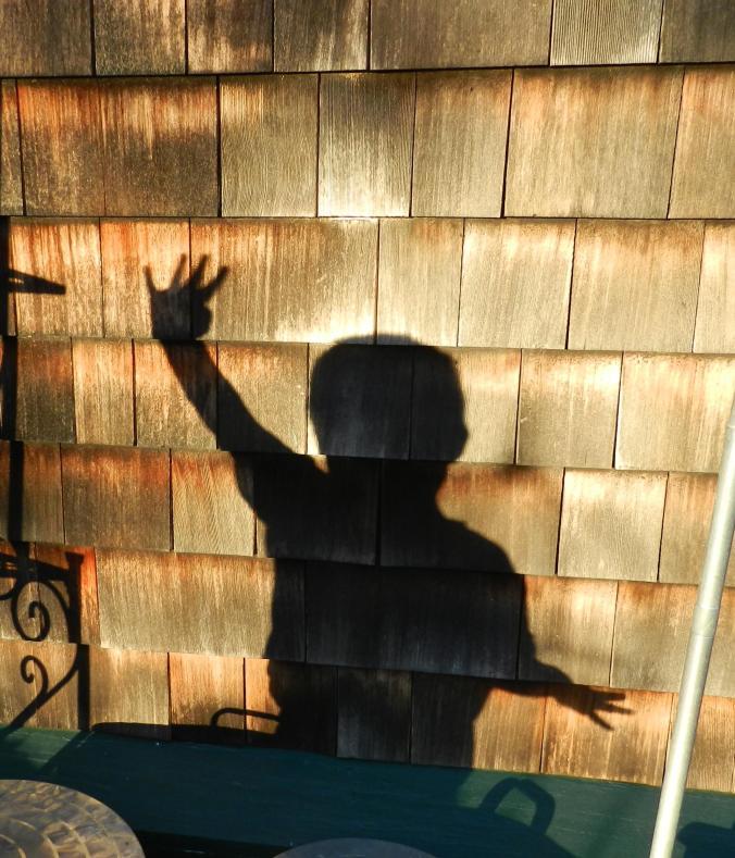 shadow boy